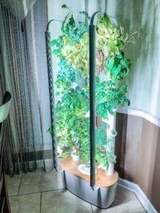 hydroponic indoor garden tower